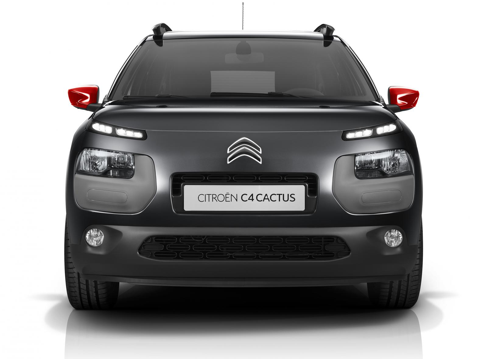 C4 Cactus Shine edition 2014 Gris Shark face avant